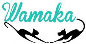Nouveau logo asso canard 1